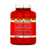 100% Whey Protein Professional 2820 g